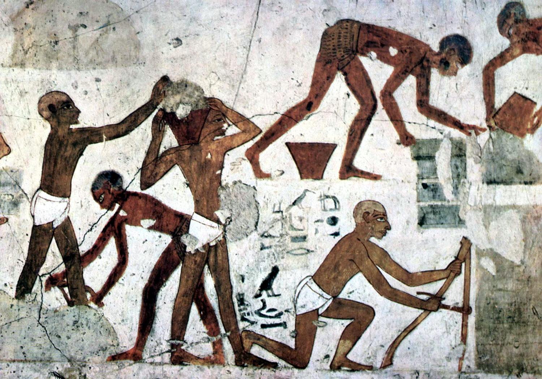 Рабство в туалете 1 фотография