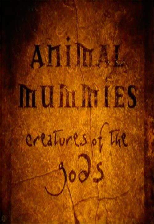 Смотреть фильм кино онлайн Мумия